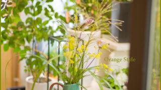 秋草のアレンジ